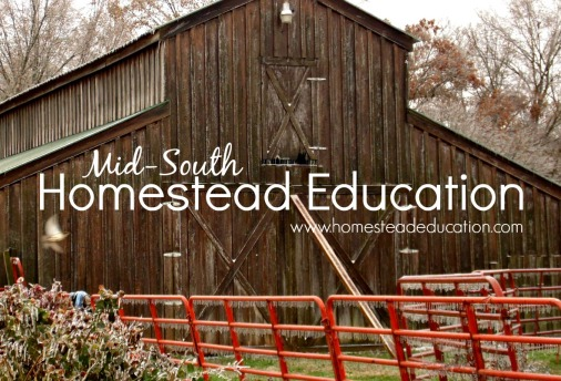 homestead education